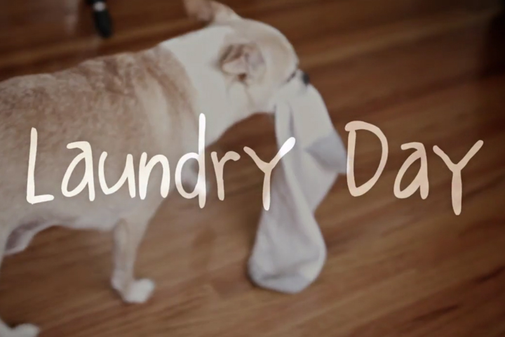 Laundry_Day